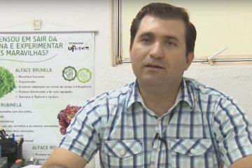 melhoramento-alface-ufscar
