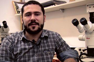 professor-rhainer-guillermo-nascimento-ferreira-hidrobiologia-insetos-evolucao-pesquisa-ufscar-labi