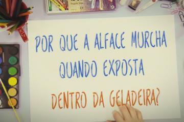 alface