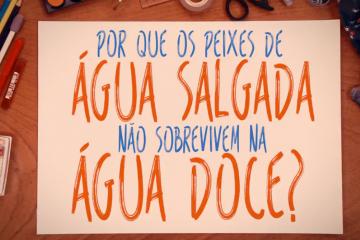 banner_ciência_explica_peixes_agua_salgada_ciência_divulgação_científica