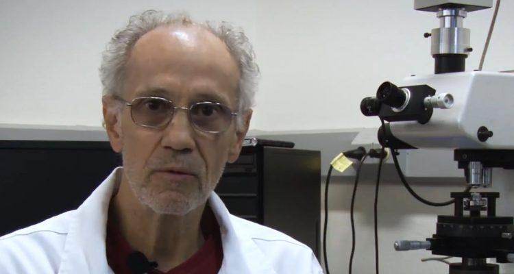Biomateriais para implantes humanos são tema de pesquisas na UFSCar