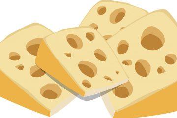 Rede de pesquisa sobre queijos artesanais ajuda a pensar sobre como aproximar as pessoas da Ciência.