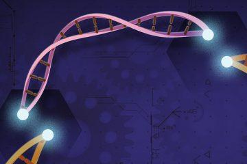 crispoquê? - Imprensa brasileira não permite o acompanhamento necessário dos debates sobre edição genética