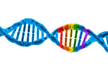 genetica-sexualidade-responsabilidade-social